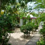 The garden of Villa Ranguana in Placencia, Belize