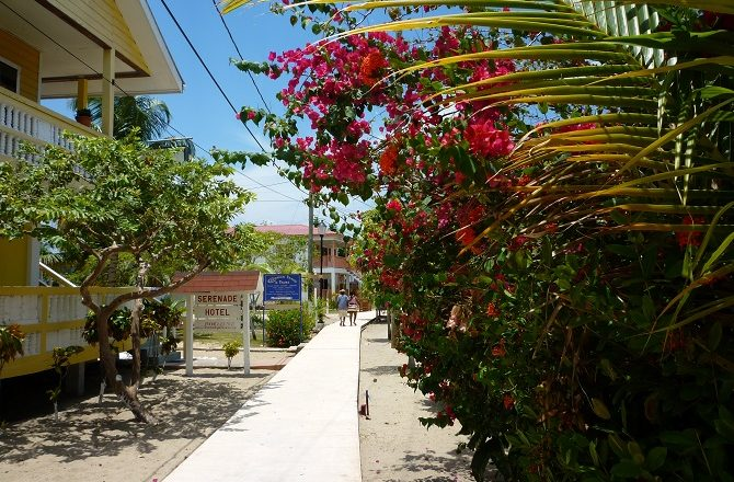 The boardwalk in Placencia Village