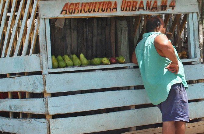 A fruit stall on La Farola en-route to Baracoa