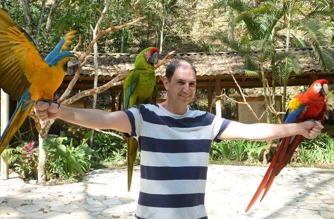 Macaw Mountain Bird Park in Copan Honduras