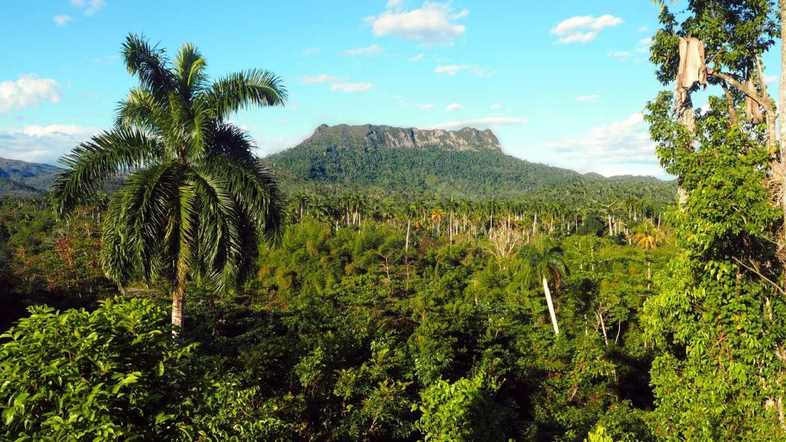 El Yunque mountain near Baracoa