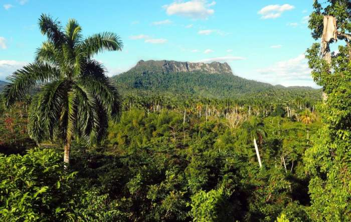 Hike to El Yunque in Baracoa