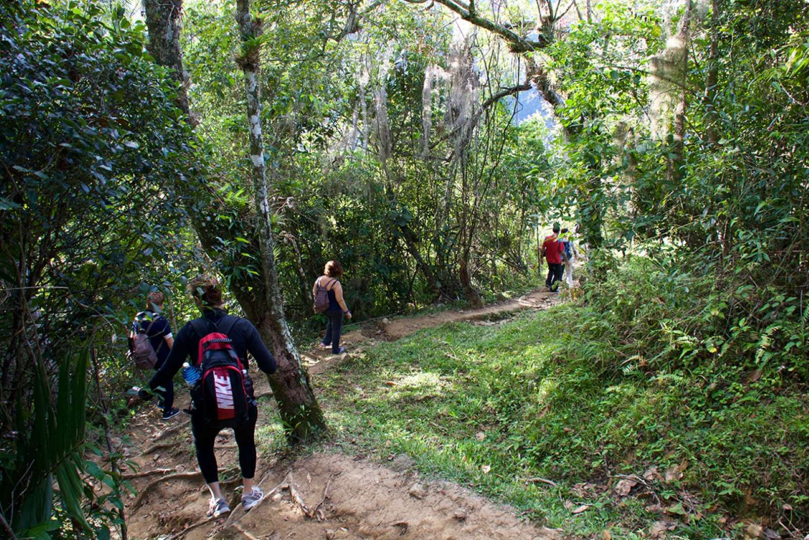 Trekking in the Sierra Maestra near Bayamo