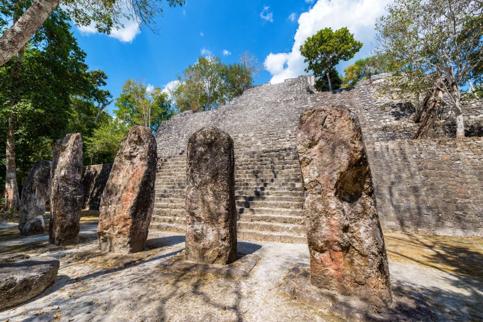 Multiple stelae in Calakmul in Mexico