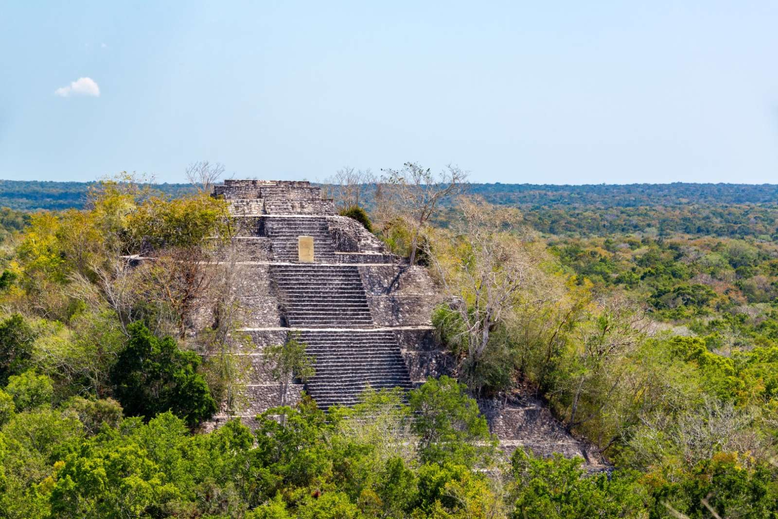 Calakmul Mexico Pyramid Jungle