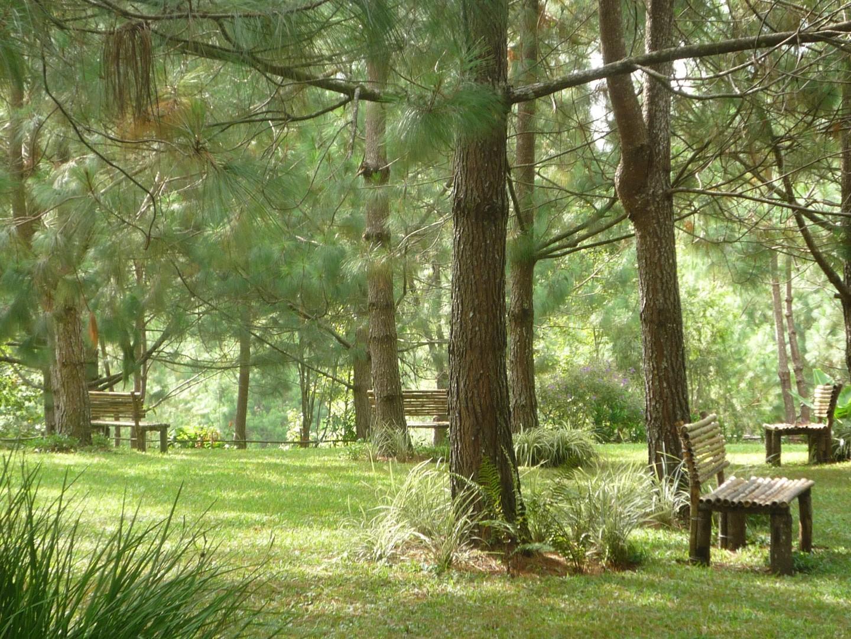 Garden of Casa Gaia in Coban