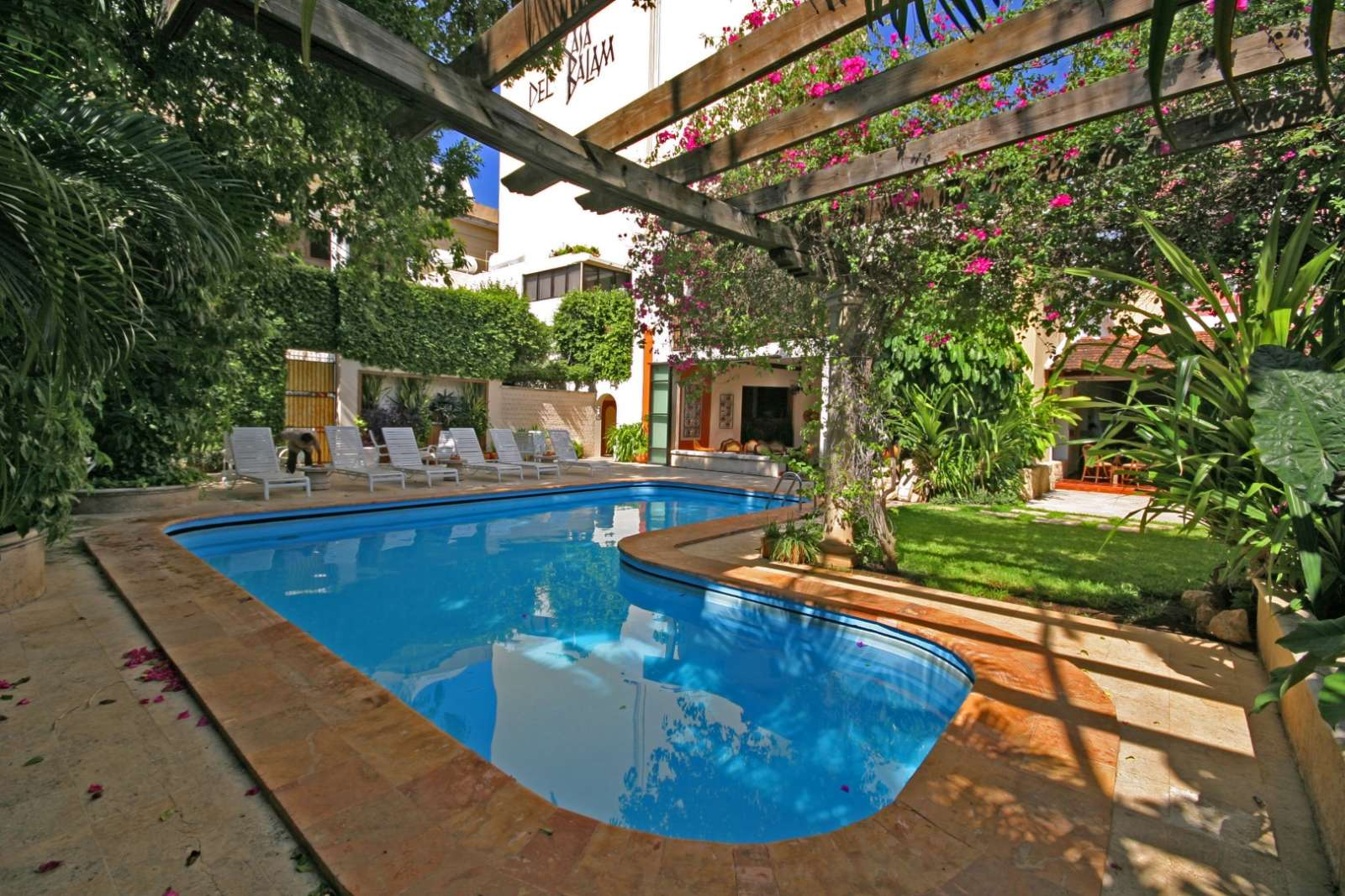 Swimming Pool hotel at Casa Del Balam in Merida