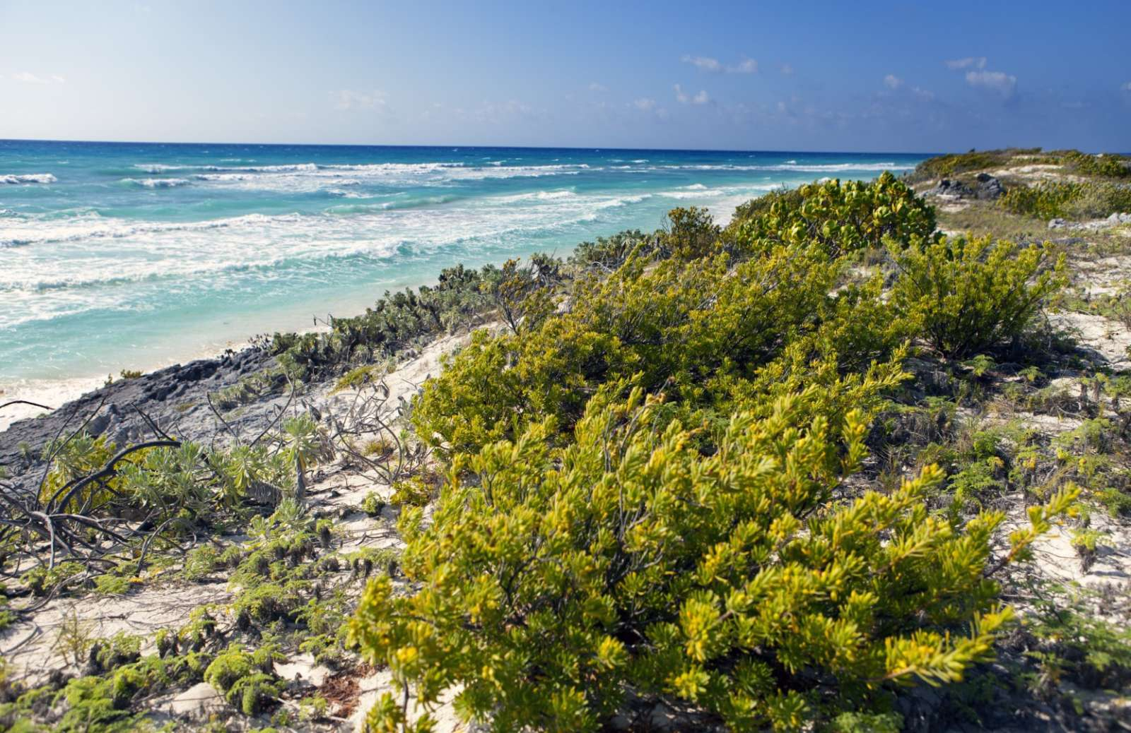 A rocky stretch of beach on Cayo Largo, Cuba