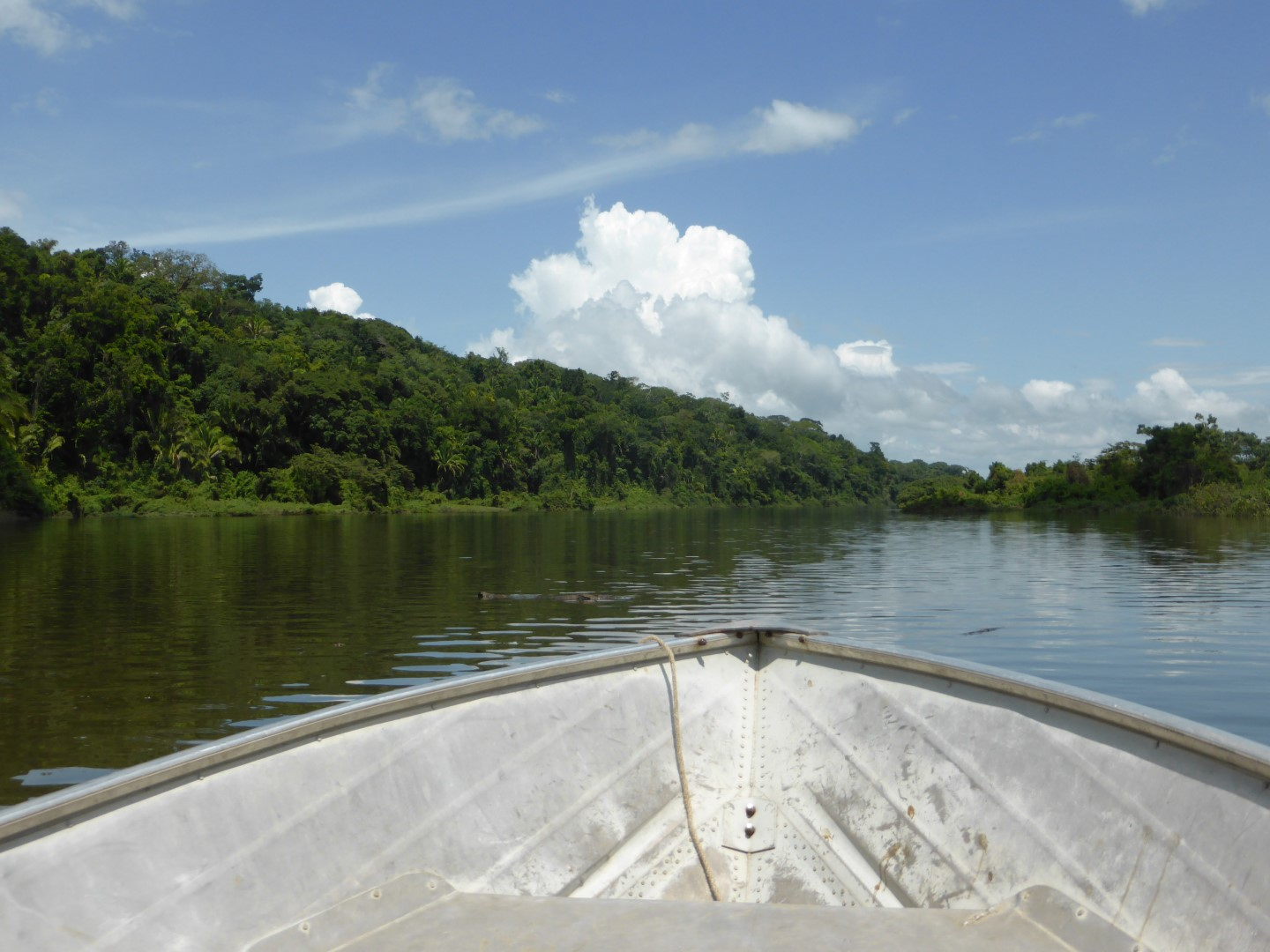 Boat trip on Pasion River leading to Ceibal, Guatemala