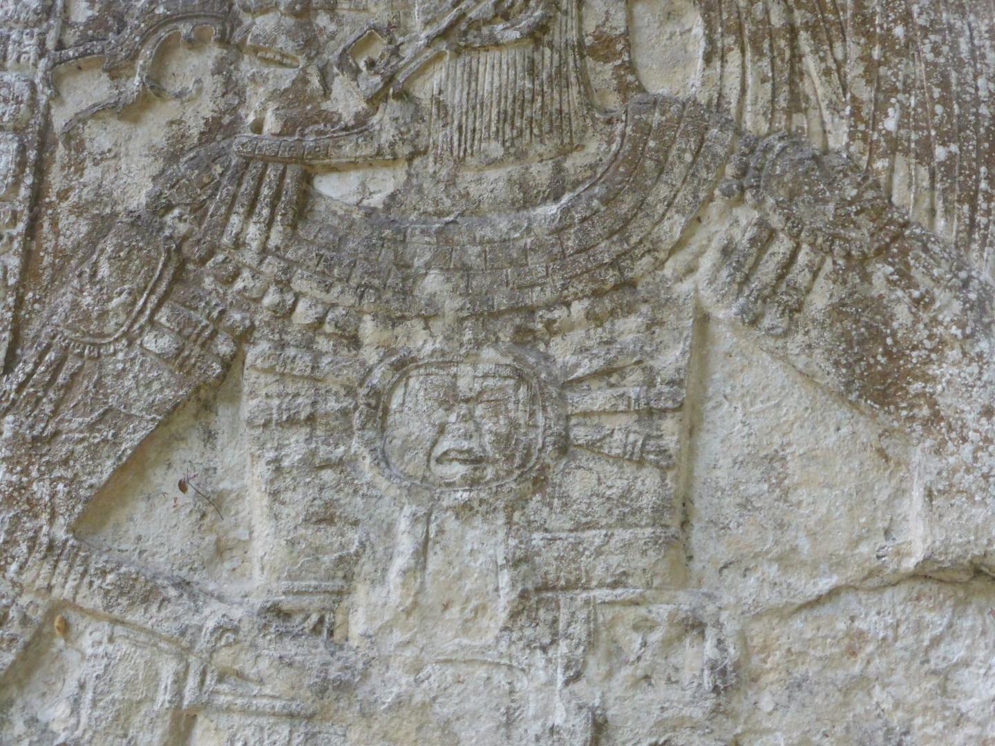 Detail of carving at Ceibal, Guatemala