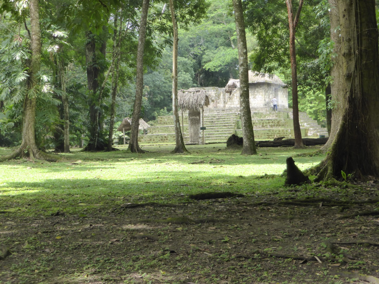 Ruins at Ceibal in Guatemala