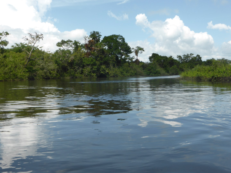 River journey to Chiminos Island Lodge at Petexbatun