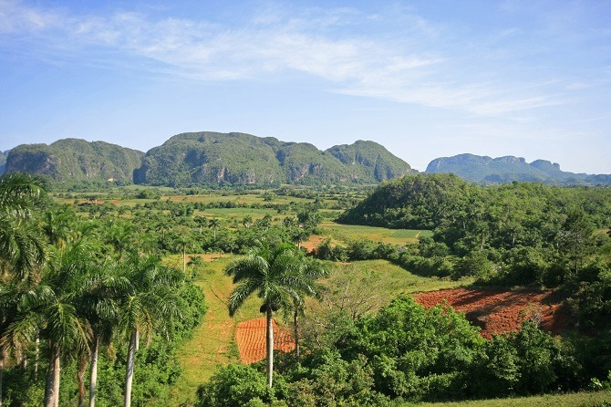 The famous mogotes of the Vinales Valley in Cuba