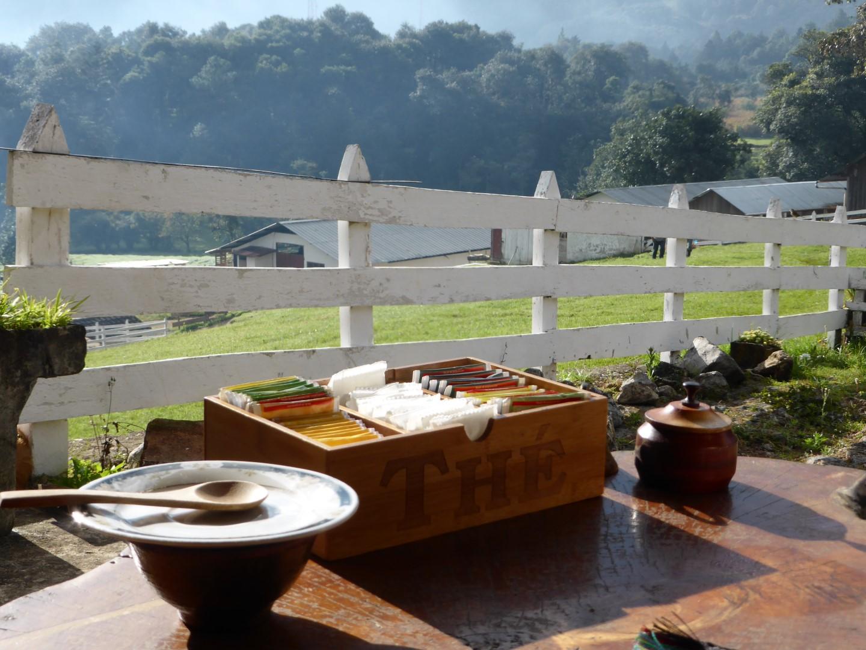 Tea box at Hacienda Mil Amores in Ixil Triangle, Guatemala