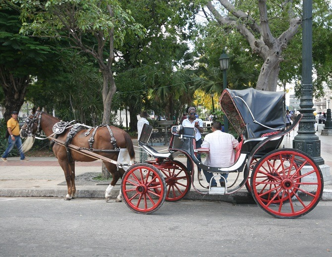 A horse-drawn carriage on the streets of Old Havana, Cuba