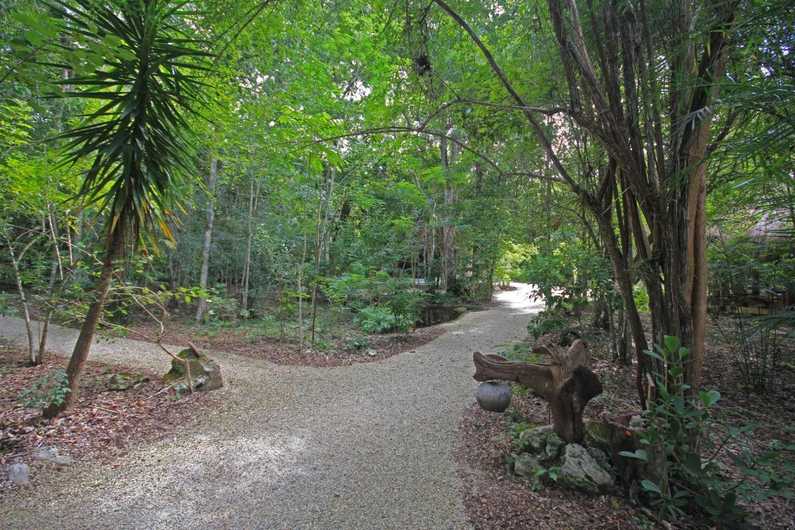 Pathway at Hotel Puerta Calakmul