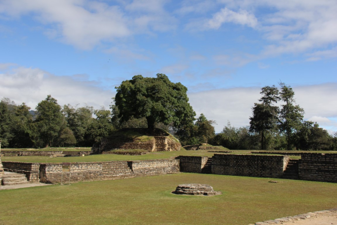 A tree growing through the Mayan ruins at Iximche