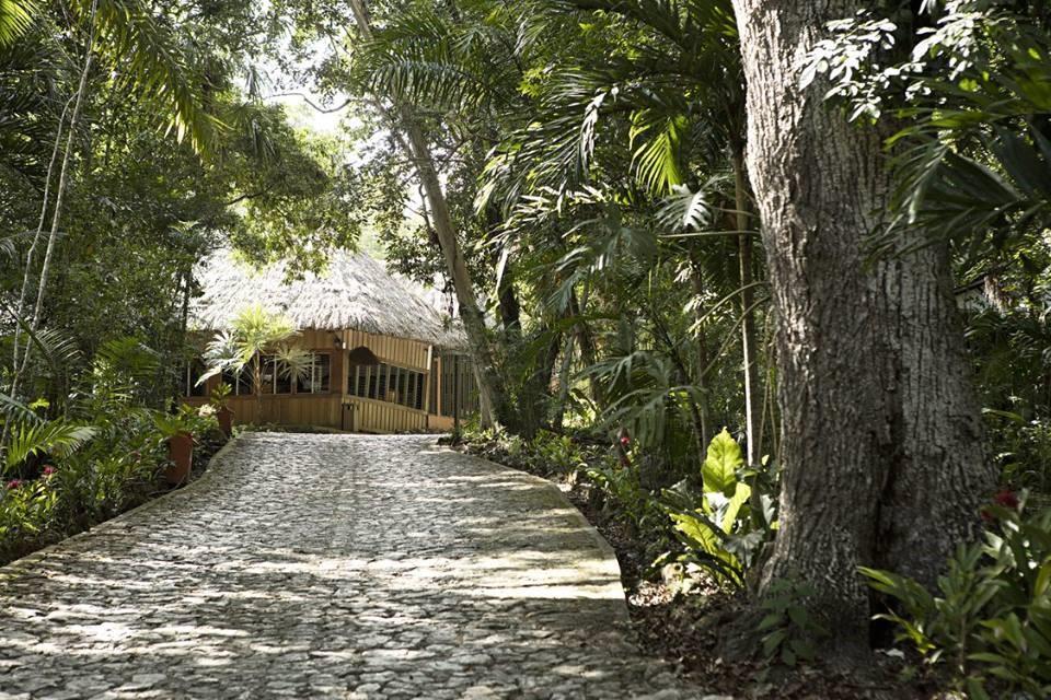 Driveway at Jungle Lodge Tikal