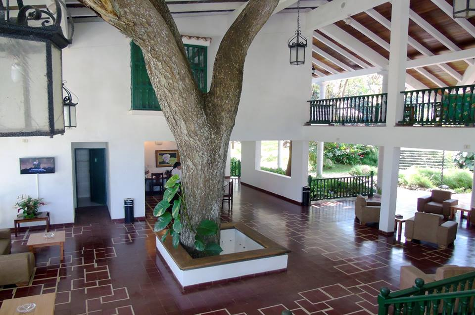Tree growing through roof of the lobby at La Moka hotel in Las Terrazas, Cuba
