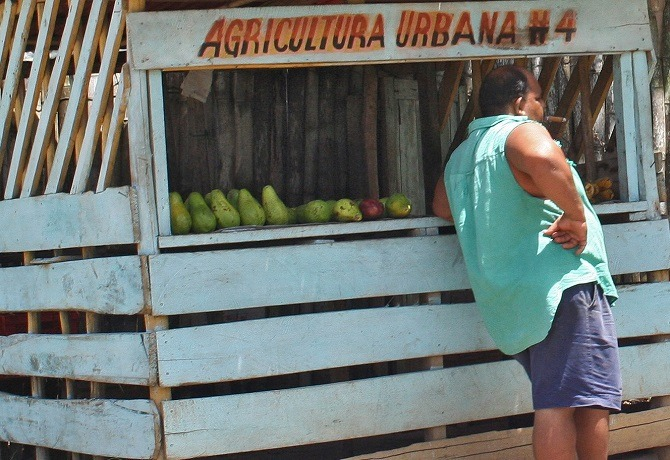 A fruit stall on La Farola en-route to Baracoa