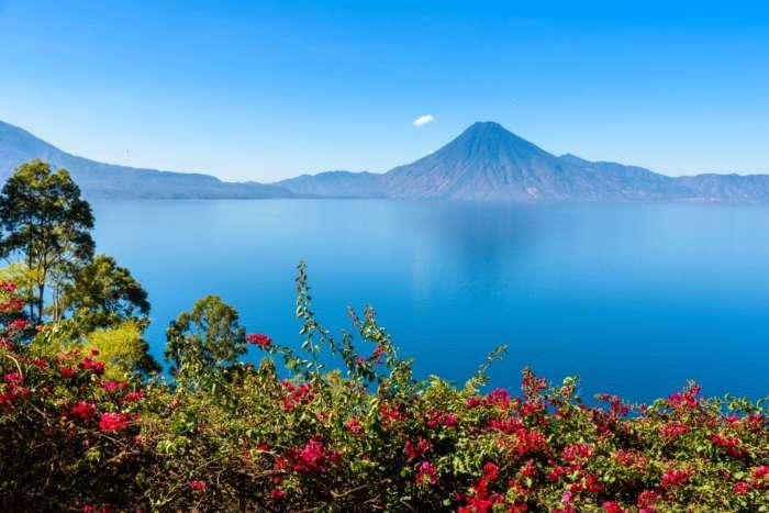 Panoramic view of Lake Atitlan, Guatemala through flowers