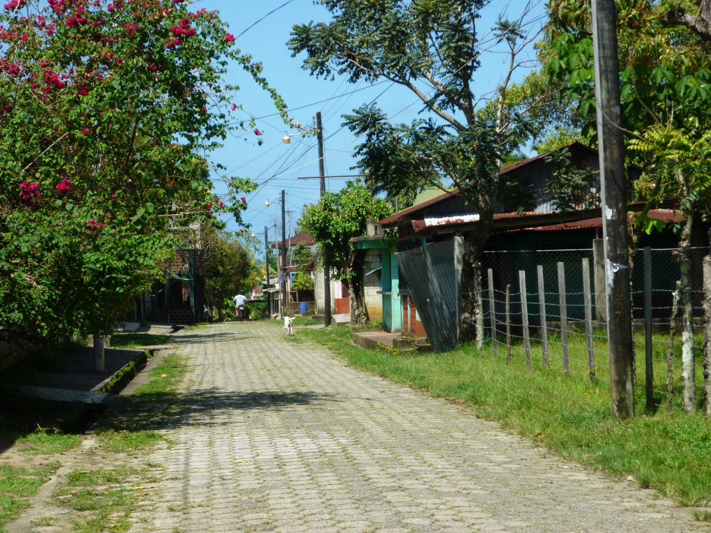 Quiet, cobbled street in Livingston, Guatemala