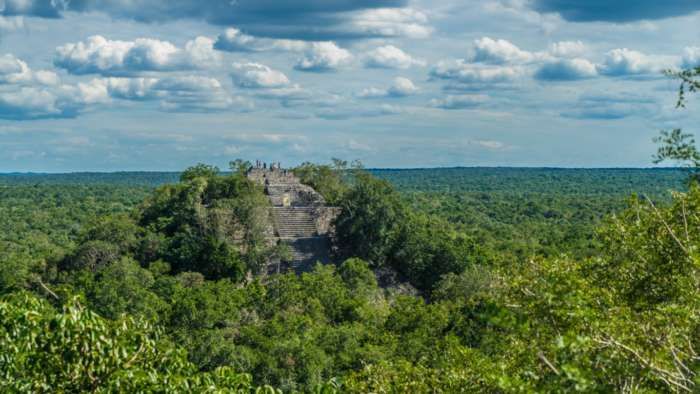 View of pyramid in the jungles of Calakmul