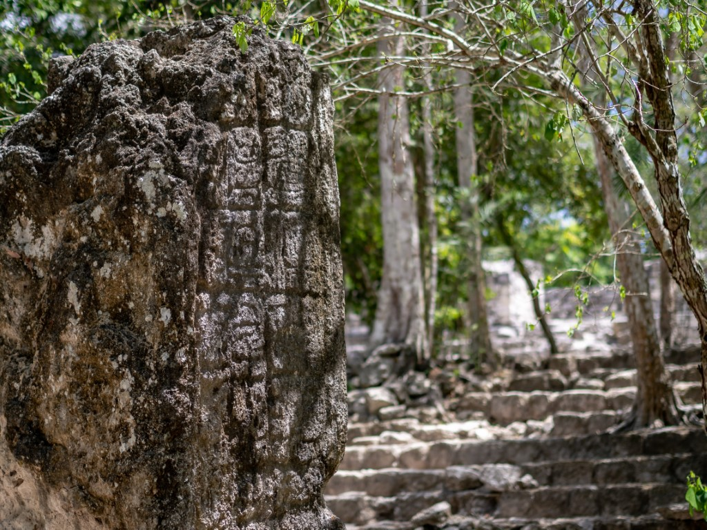 Carved stelae at Calakmul