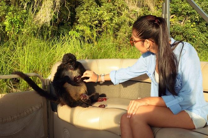 Feeding monkeys at Monkey Island in Guatemala
