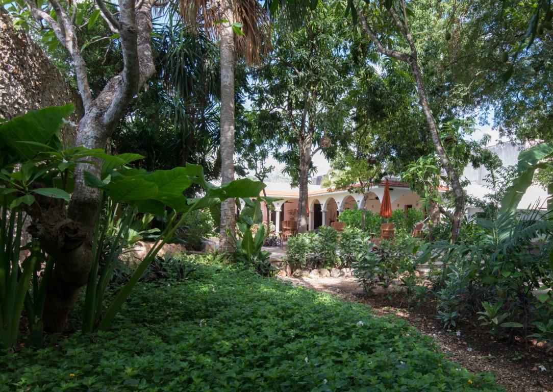 Garden at Posada San Juan Valladolid