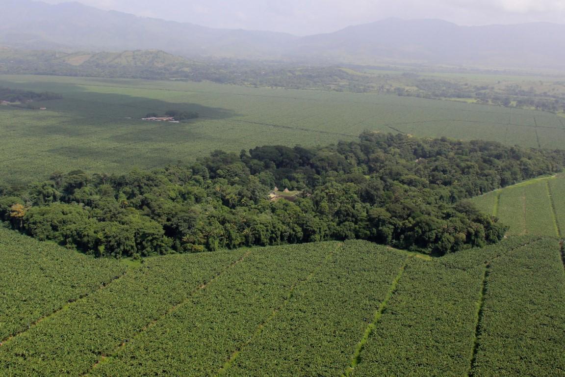 Aerial view of Quirigua