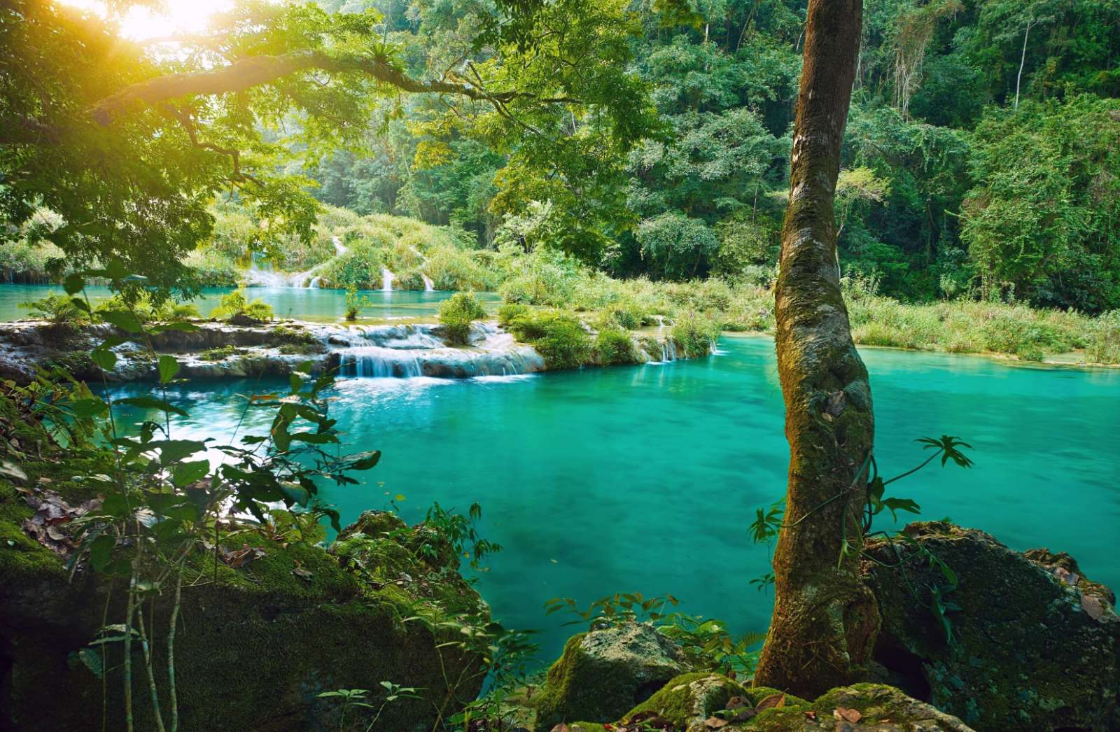 Beautiful natural pool at Semuc Champey in Guatemala