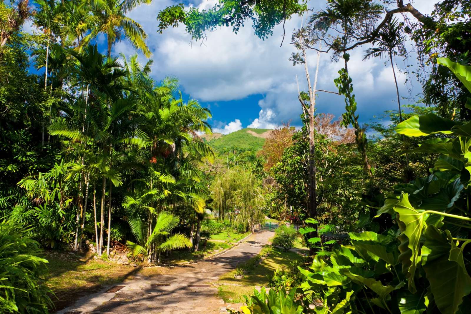 Walking trail at Soroa Botanical Gardens