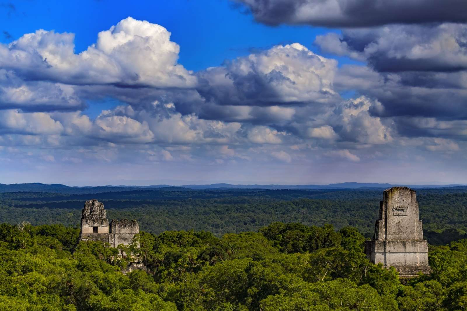 Panoramic view of Mayan ruins above the jungle canopy in Tikal, Guatemala