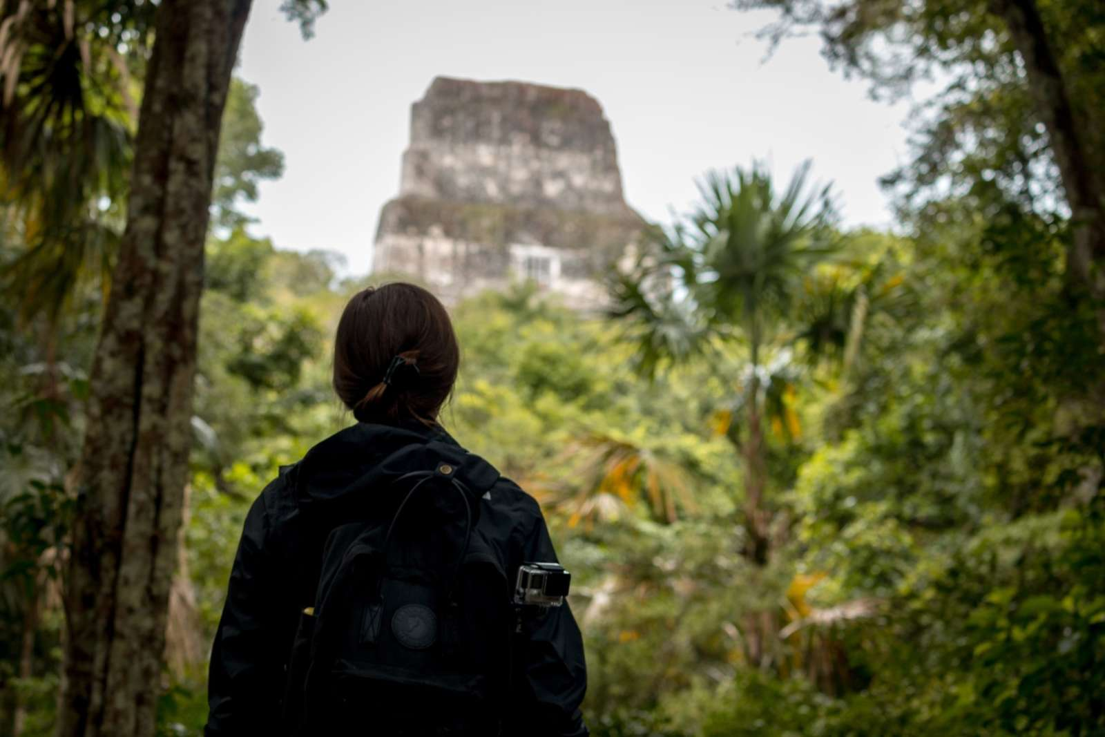 Woman looking temple in Tikal, Guatemala