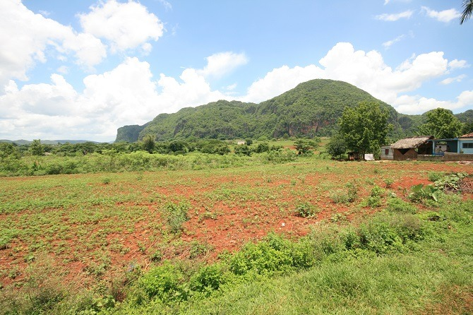 The view from Casa Vista al Valle in Vinales, Cuba