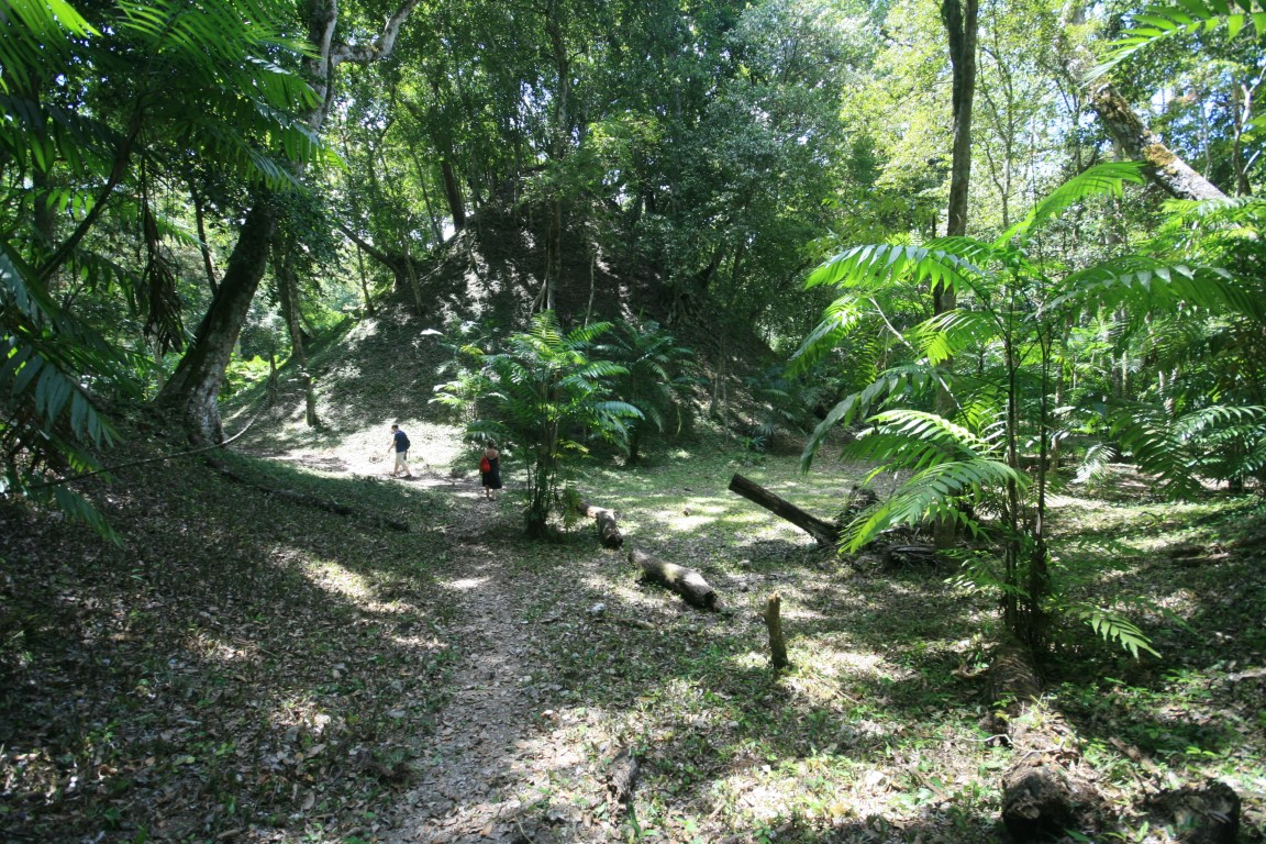 Jungle path at Yaxha in Peten Guatemala