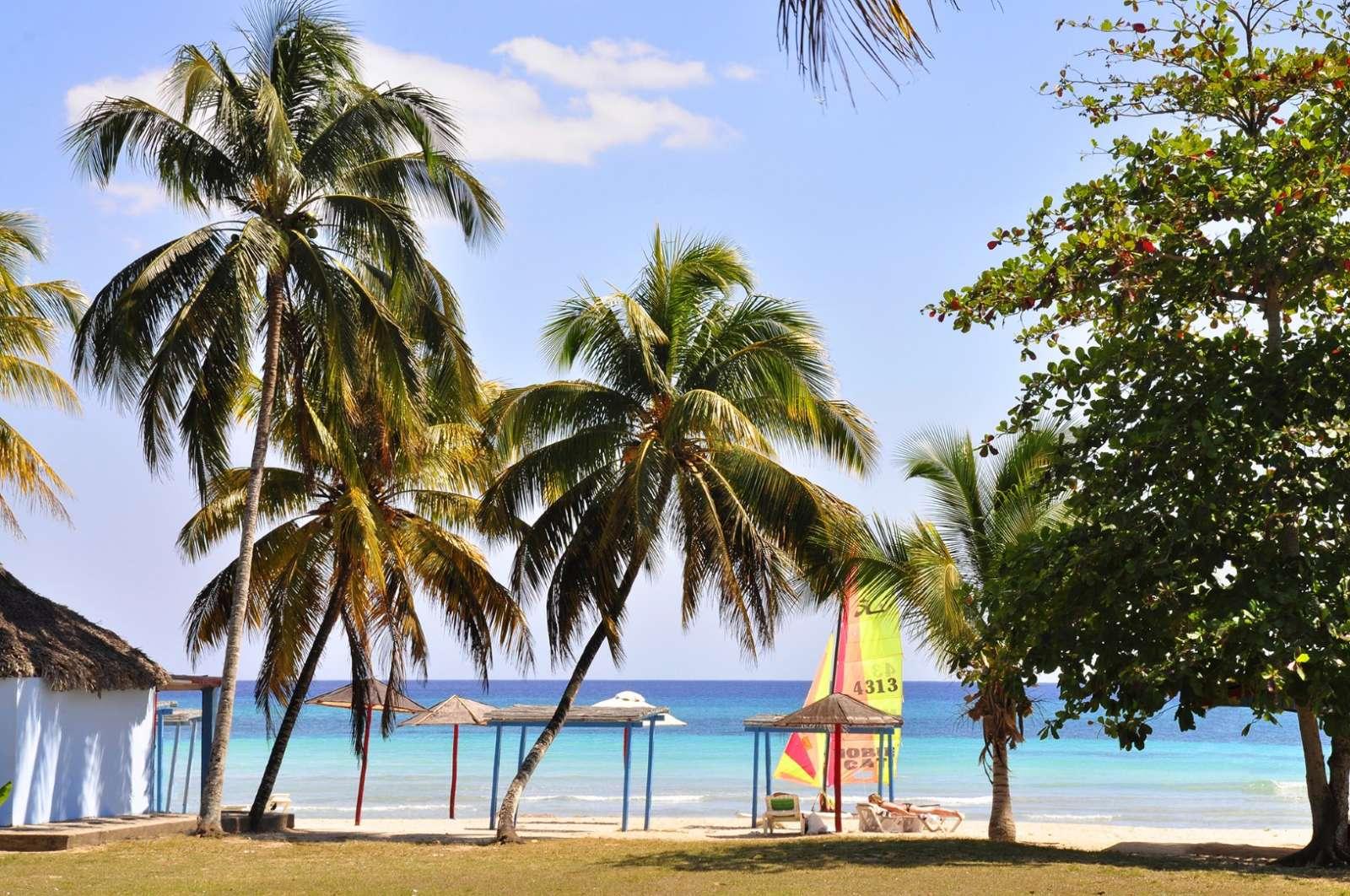 Beach through palm trees at Hotel Playa Larga