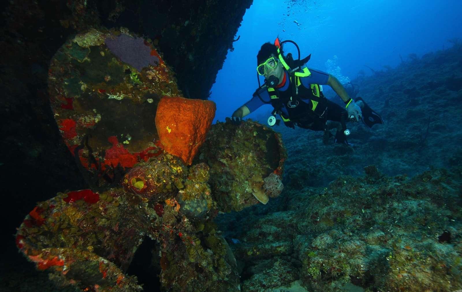 Zapata Peninsula Cuba Scuba Diving