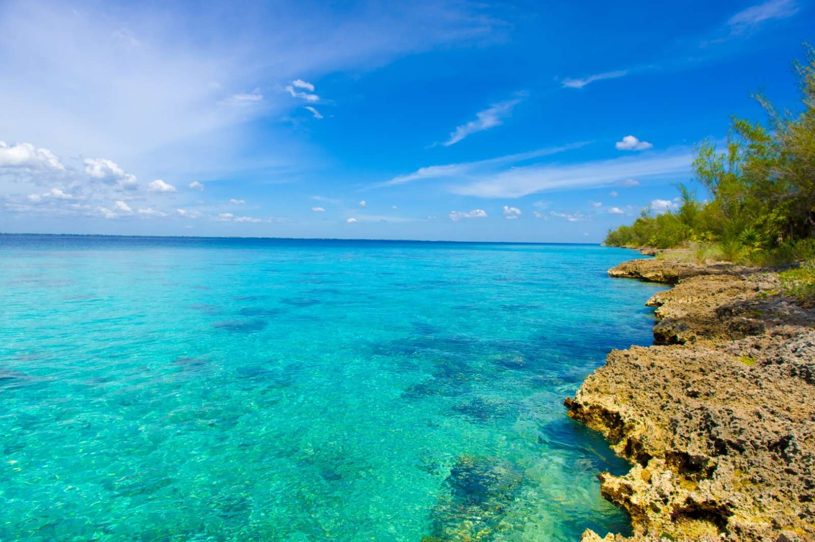Snorkelling opportunities in Zapata & Bay of Pigs