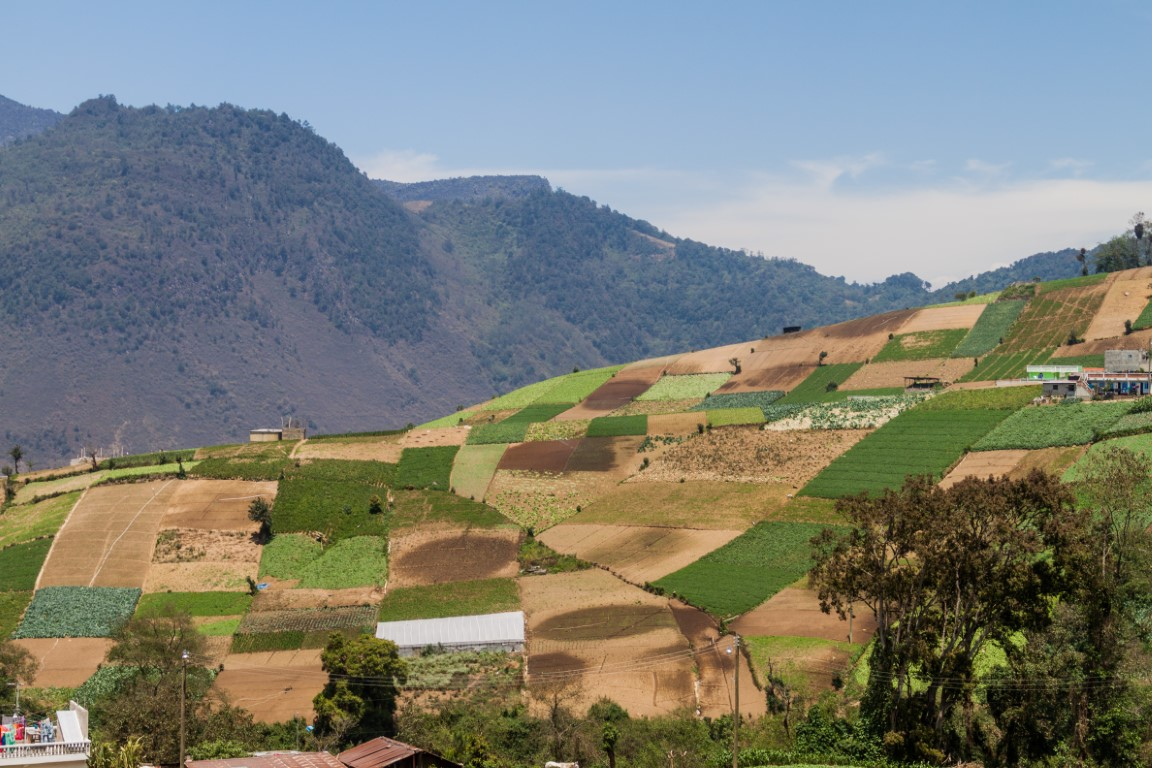 Vegetable fields outside Zunil in Guatemala