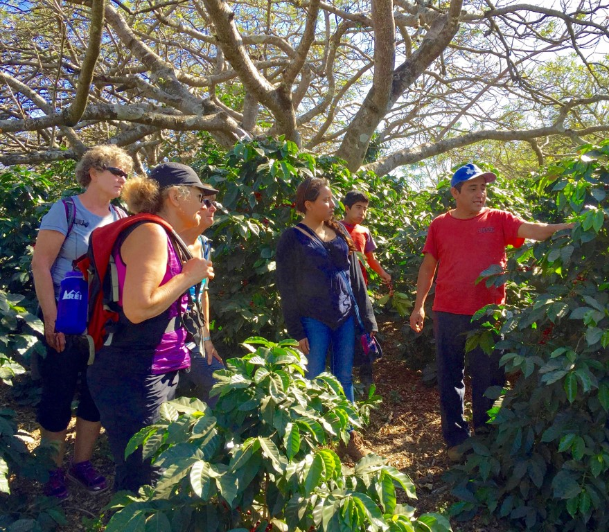 Visiting a coffee farm while hiking in Guatemala