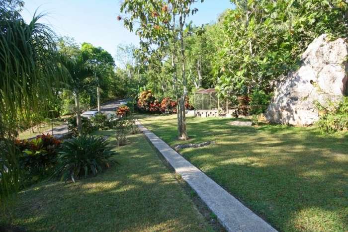 The front garden of Casa Agapito in Soroa