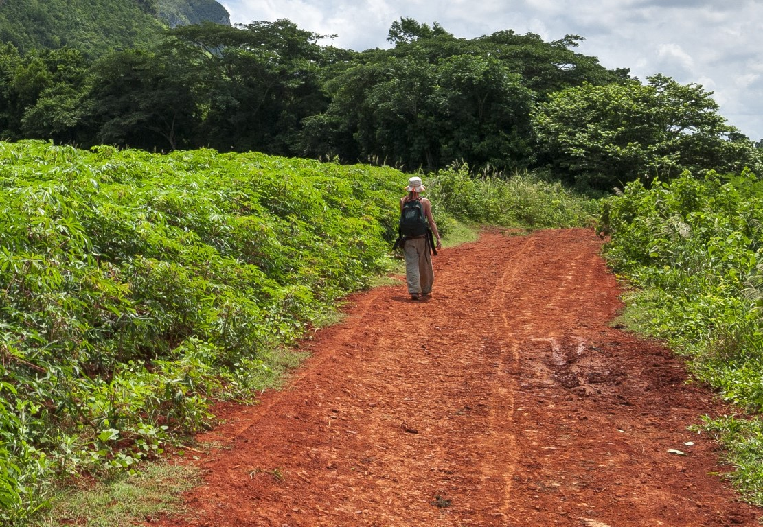 A woman hiking alone in the Vinales Valley