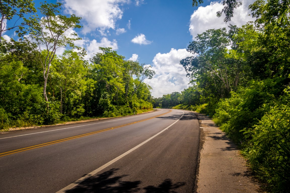 A quiet road surrounded by jungle in the Yucatan Peninsula