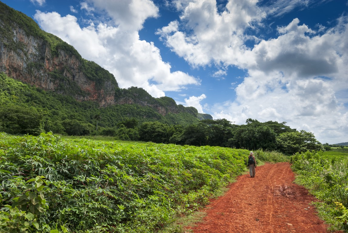 A woman walking alone in Vinales on a Cuban walking holiday