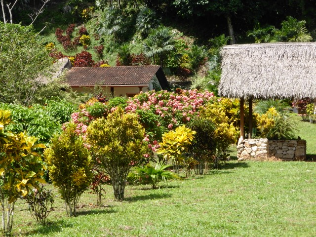 Garden at Candelaria Lodge