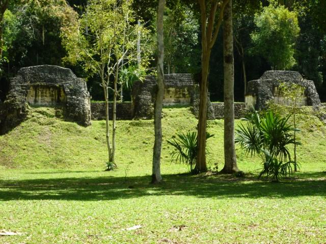Grassy ruins at Tikal, Guatemala