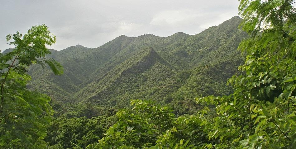 Fly drive route over La Farola