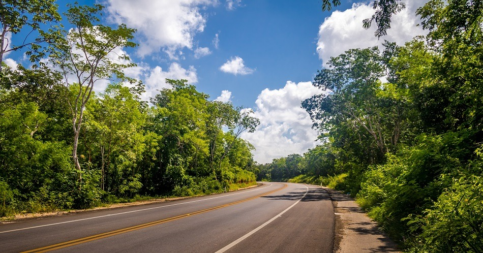 An empty road in Yucatan